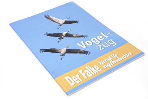 Der Falke - Sonderheft - Vogelzug