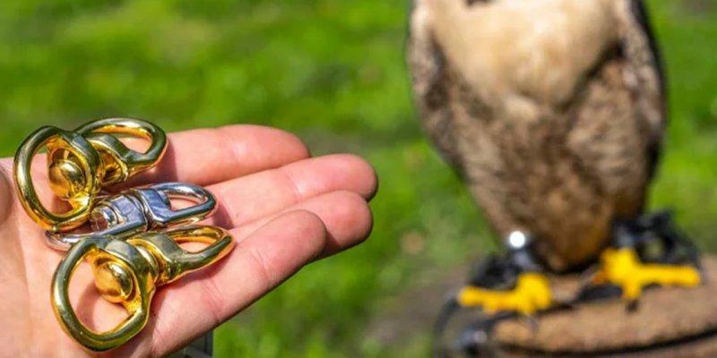 Drahlen für Falken