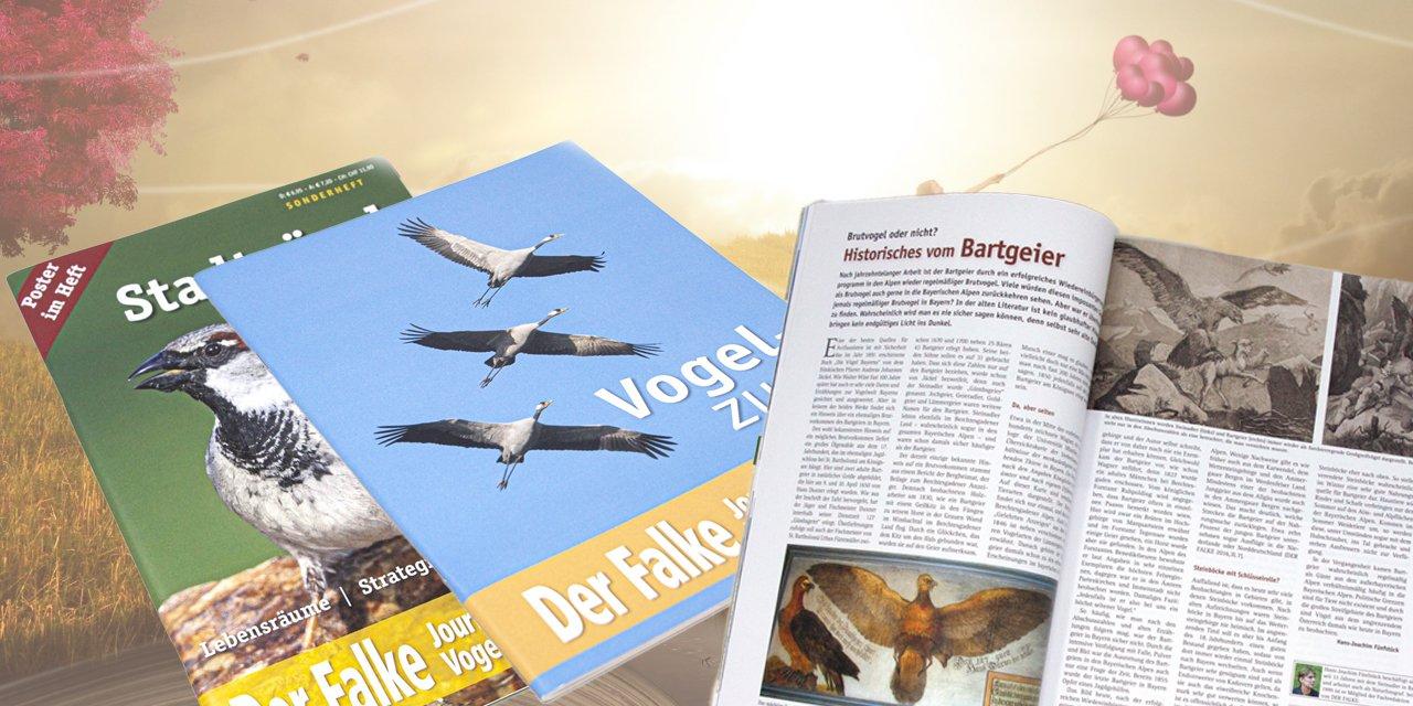 Unsere tierischen Fachzeitschriften.