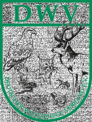 DWV e. V.