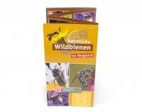 Bestimmungskarte - Heimische Wildbienen im Vergleich
