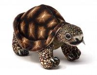 Kuscheltier - Landschildkröte braun - 20 cm