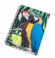 3D Notizbuch - Papageien - klein