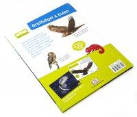 Memo Wissen & Entdecken Greifvögel und Eulen