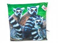 Stoffkissen - Lemuren - 35x35