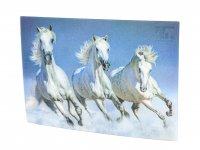 3D Postkarte Pferde weiss