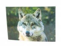 3D Postkarte Wolfskopf