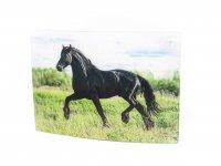 3D Postkarte Pferd schwarz