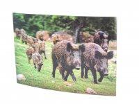 3D Postkarte Wildschwein Familie