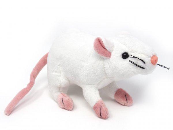 Kuscheltier - weiße Ratte