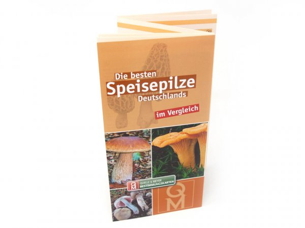Bestimmungskarte - Die besten Speisepilze Deutschlands