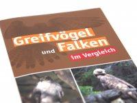 Bestimmungskarte - Greifvögel und Falken