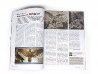 Der Falke - Sonderheft - Geier