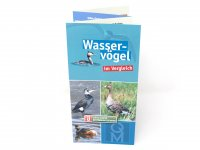 Bestimmungskarte - Wasservögel