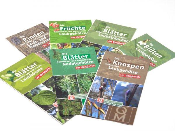 Bestimmungskarten-Set - Bäume und Sträucher, 7 Teile