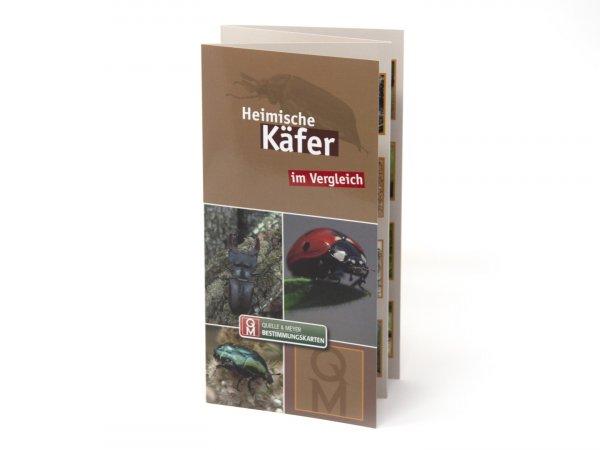 Bestimmungskarte - Heimische Käfer