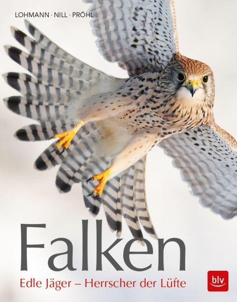 Falken Edle Jäger - Herrscher der Lüfte.