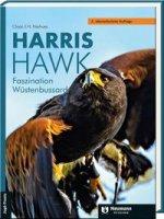 Harris Hawk Faszination Wüstenbussard